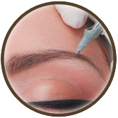 Brown circle including image of brows