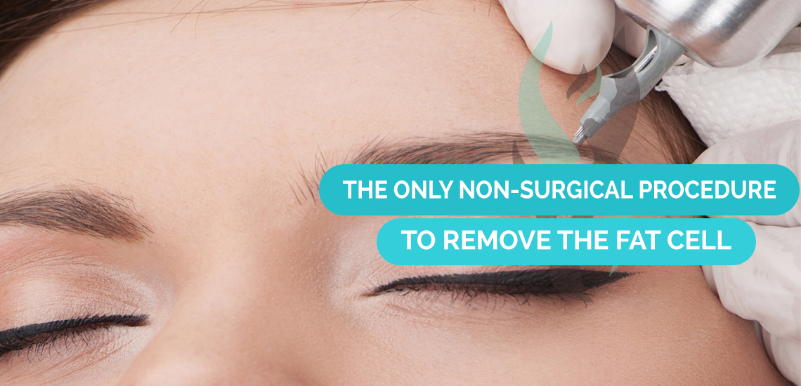 Slideshow Image for Permanent Aesthetic Solutions